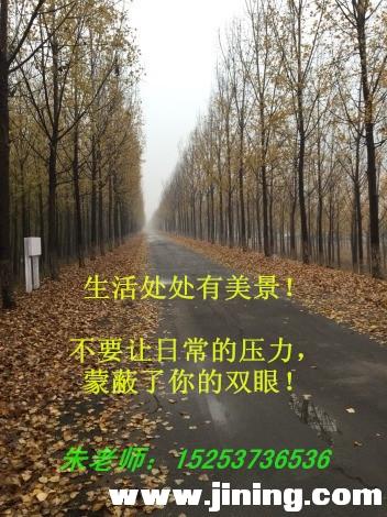 林间小路_带字.jpg