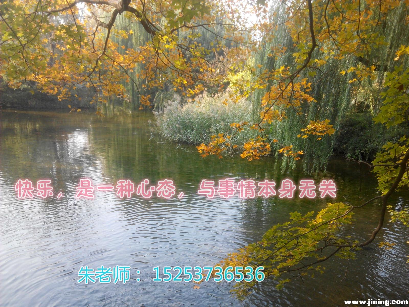 林间美景.jpg